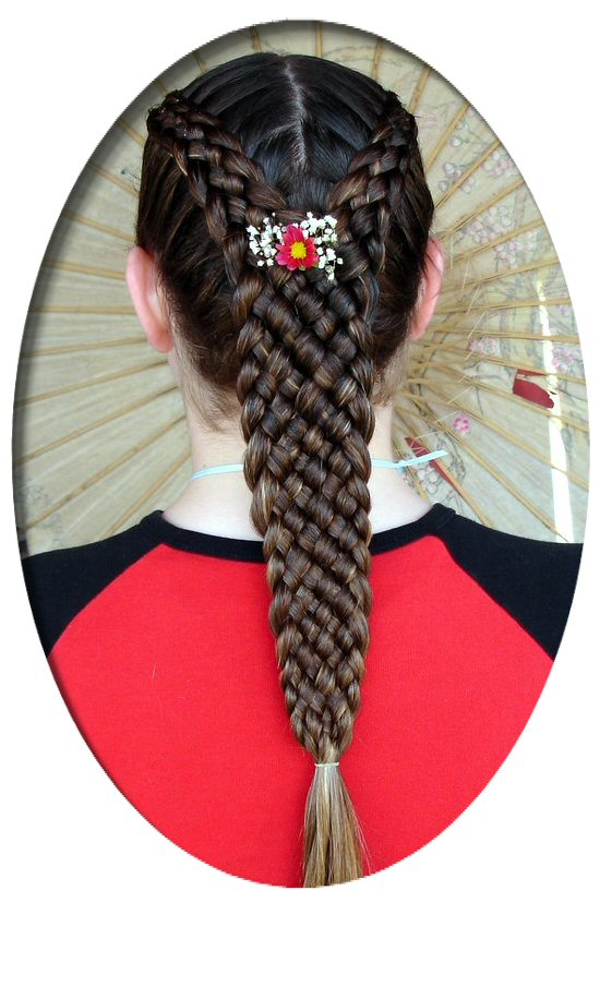 French Braids By Twisted Sisters Melanie S French Braid Gallery Page